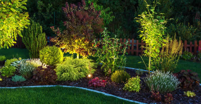 Landscape Lighting Arlington Tx Chop Chop Landscaping Arlington Tx